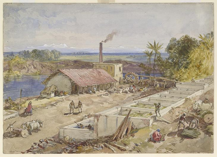 An indigo factory in Bengal. Inscribed on front in ink with title and artist's signature. Watercolour. Originally published/produced in 1863. BL Images: WD 1017