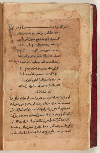 بداية تاريخ عالم الحيوان لأرسطو والذي يُعتَقد بأنه تُرجِم إلى العربية بواسطة ابن البطريق. Add. MS 7511، ص. ١ظ
