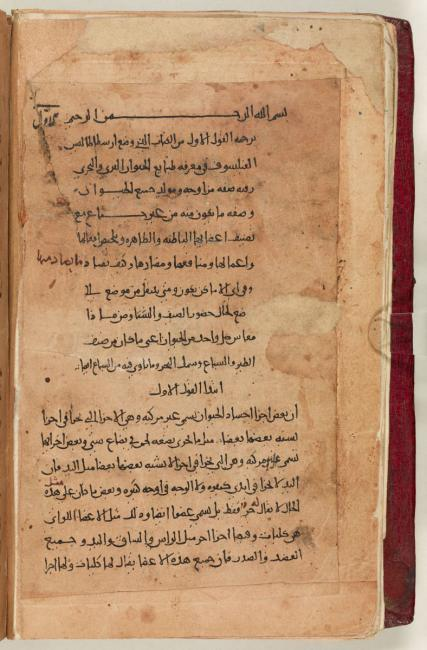 Beginning of Aristotle's Historia Animalium thought to have been translated into Arabic by Ibn al-Biṭrīq. Add. MS 7511, p.1v
