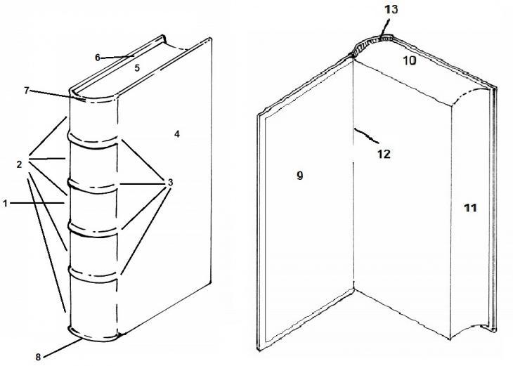 مخططات توضح السمات الهيكلية المختلفة لمجلد تم تجليده، داخليًا (من الناحية اليمنى) وخارجيًا (من الناحية اليسرى).