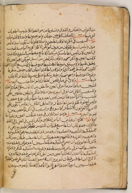 Ḥunayn's discussion of the reason why the eye has two lids in his Questions on the Eye. Or. 6888, f. 5v