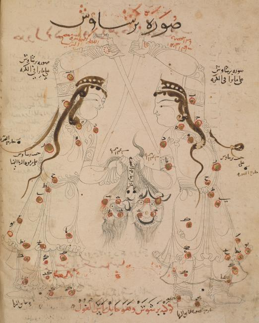 The constellation of Perseus as it appears in the sky (left, erroneously labelled 'on the celestial globe') and on a celestial globe (right). The bleeding head of Medusa has been replaced by a bearded male desert demon (ghūl). Or. 5323, f. 21v