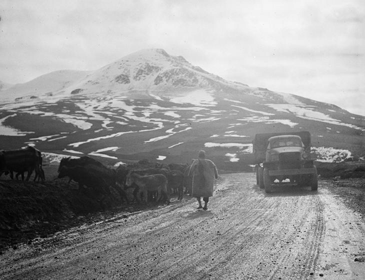 A United States Army truck convoy carrying supplies through the Persian Corridor to the Soviet Union, May 1943. Source: Library of Congress Prints and Photographs Division. Public Domain