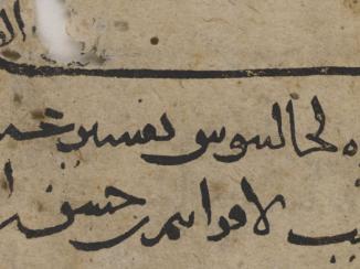حنين بن إسحق وإزدهار اللغة العربية كلغة للعلم
