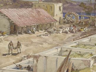 تجارة النيلة بالخليج في القرن التاسع عشر