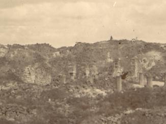 اللبان في ظفار: تجارة قديمة وسط توترات القرن التاسع عشر